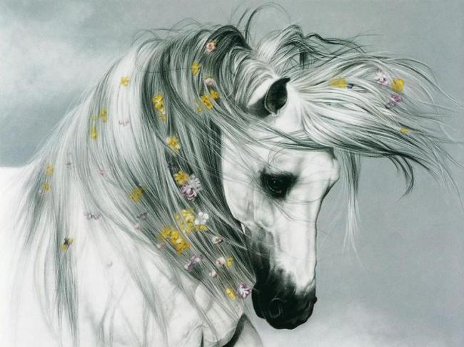 pretty,sad,sorrow,horse,animal