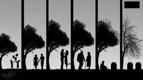 love,life,death